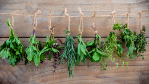Herbes aromàtiques: sabor i nutrients al plat