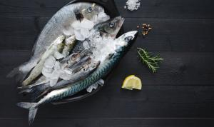 Com podem identificar el bon peix?
