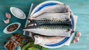 Com són, com hem de triar i com podem cuinar el peix blau