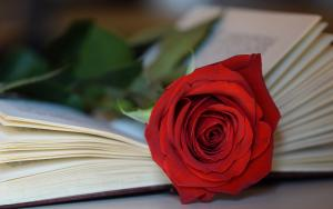 Llibres gastronòmics per regalar aquest Sant Jordi