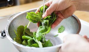 Com has de rentar els aliments frescos?